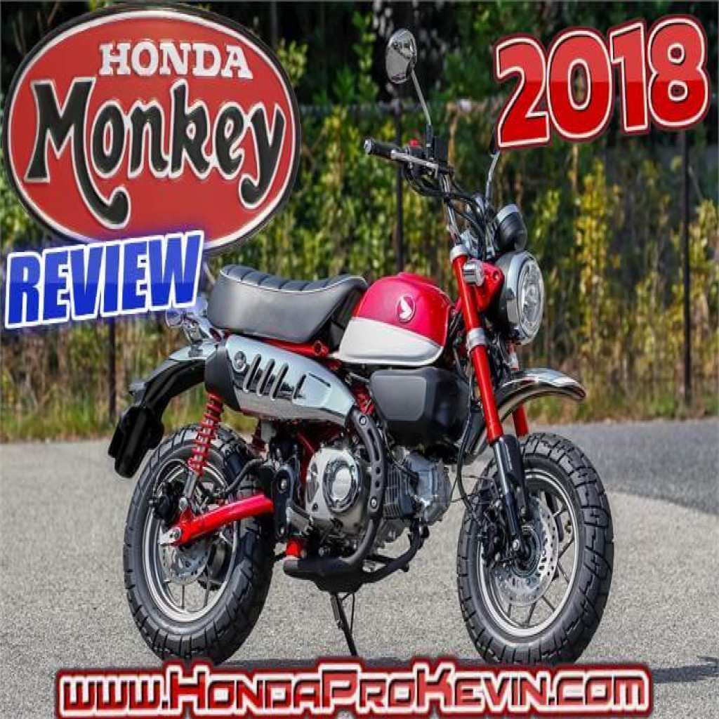 16 Gallery of 2020 Honda Z50 Price and Review with 2020 Honda Z50