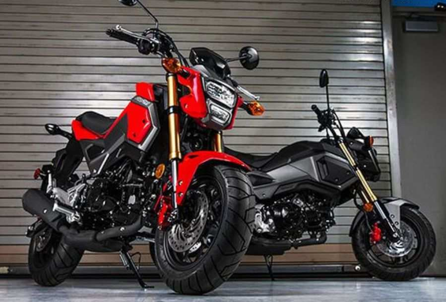 58 Great 2020 Honda Grom Exterior Date Photos for 2020 Honda Grom Exterior Date