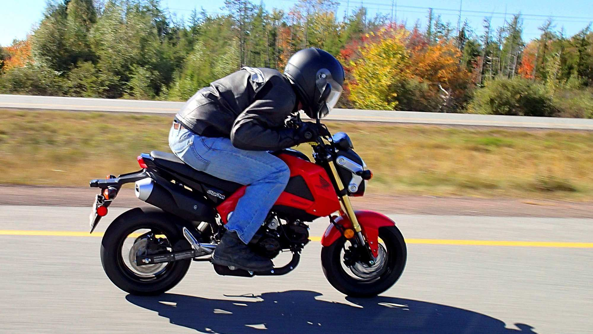 59 New 2020 Honda Grom Colors First Drive with 2020 Honda Grom Colors