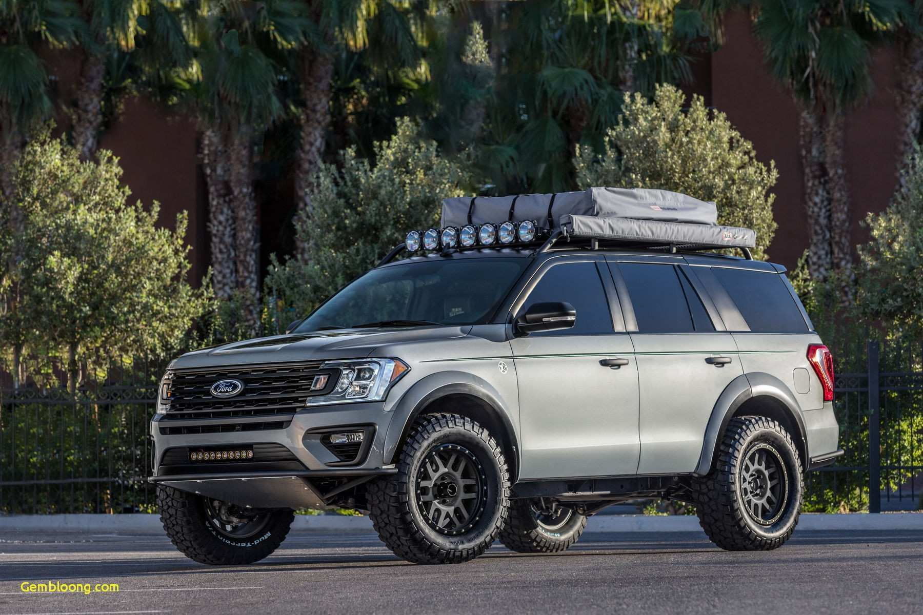 85 The 2020 Ford Expedition New Review with 2020 Ford Expedition