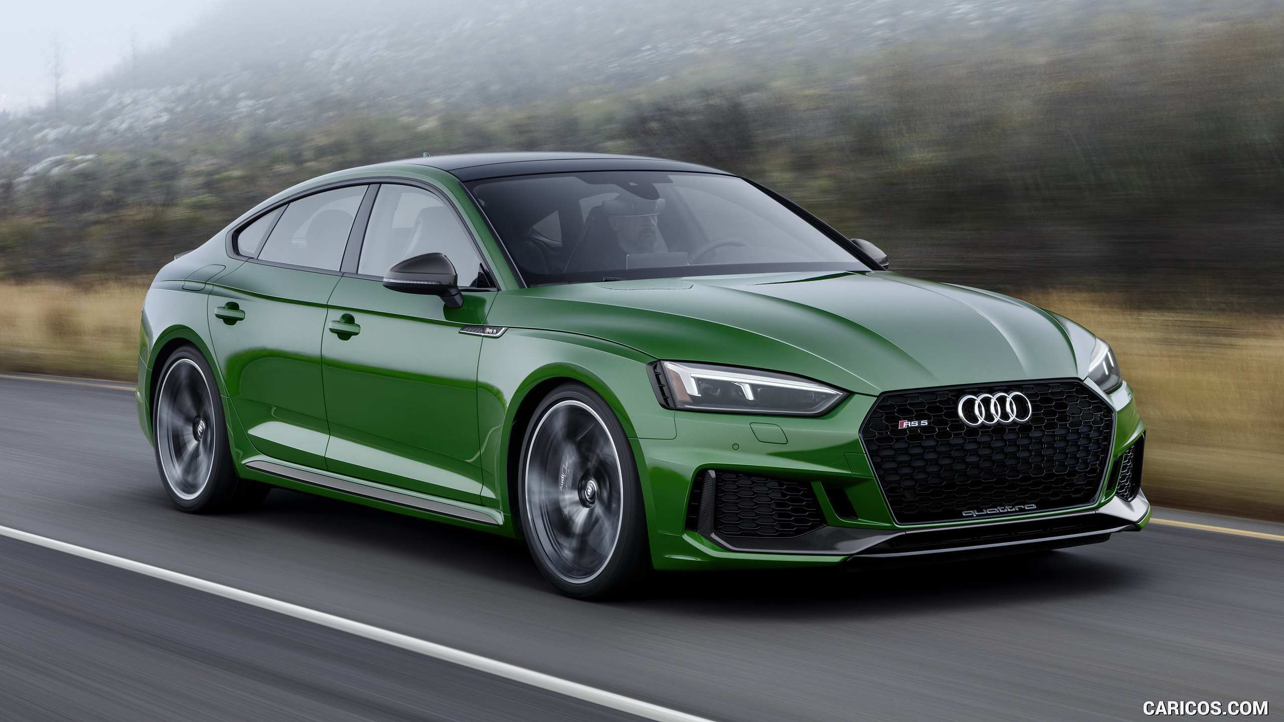 12 New 2019 Audi Green Reviews with 2019 Audi Green