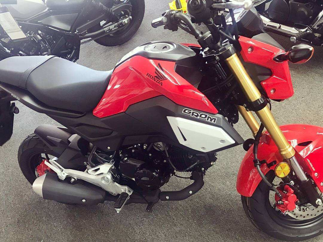 22 Concept of 2019 Honda Grom Specs First Drive with 2019 Honda Grom Specs