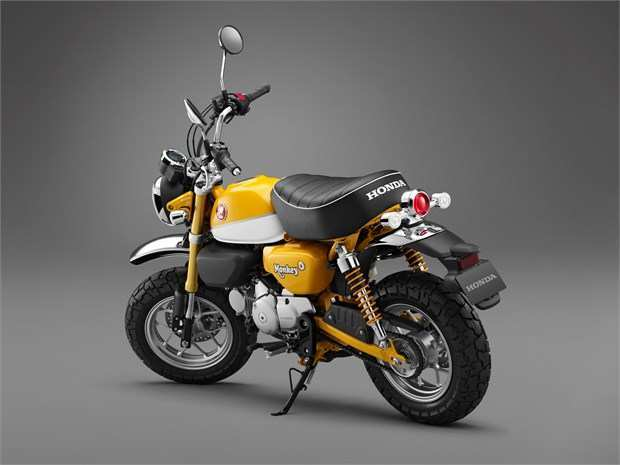 24 All New 2019 Honda Z50 Model for 2019 Honda Z50