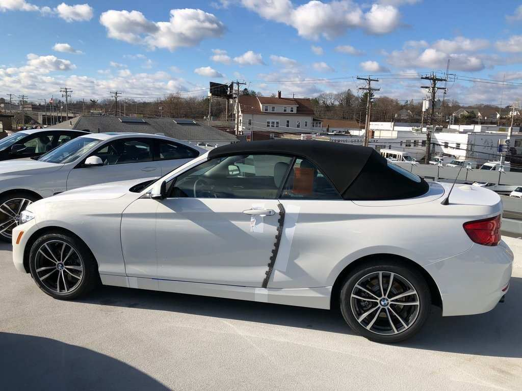 42 New 2019 Bmw 2 Series Convertible Picture for 2019 Bmw 2 Series Convertible