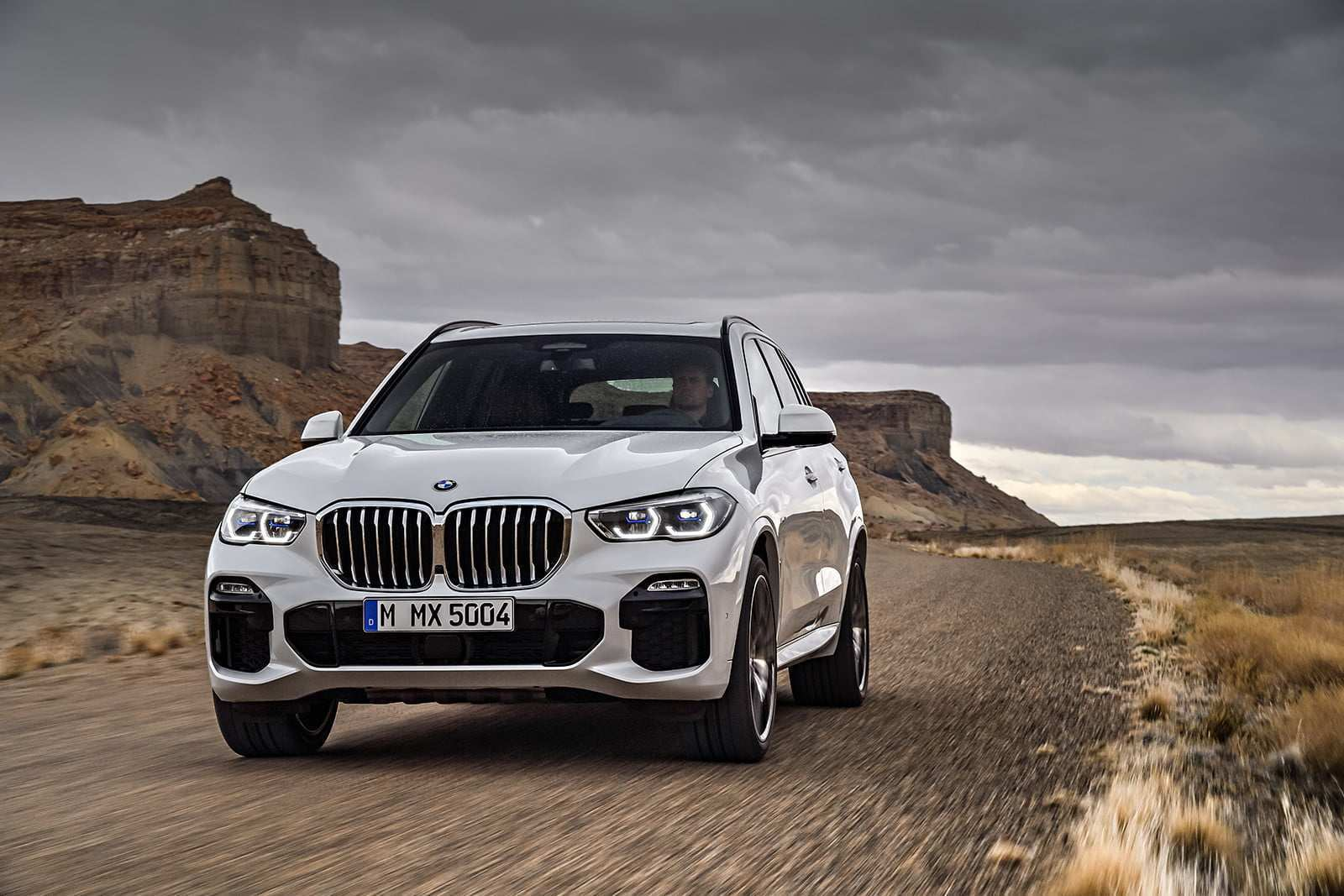 45 Gallery of 2019 Bmw X5 Release Date Style by 2019 Bmw X5 Release Date