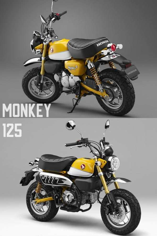 46 Great 2019 Honda 125 Monkey Style for 2019 Honda 125 Monkey