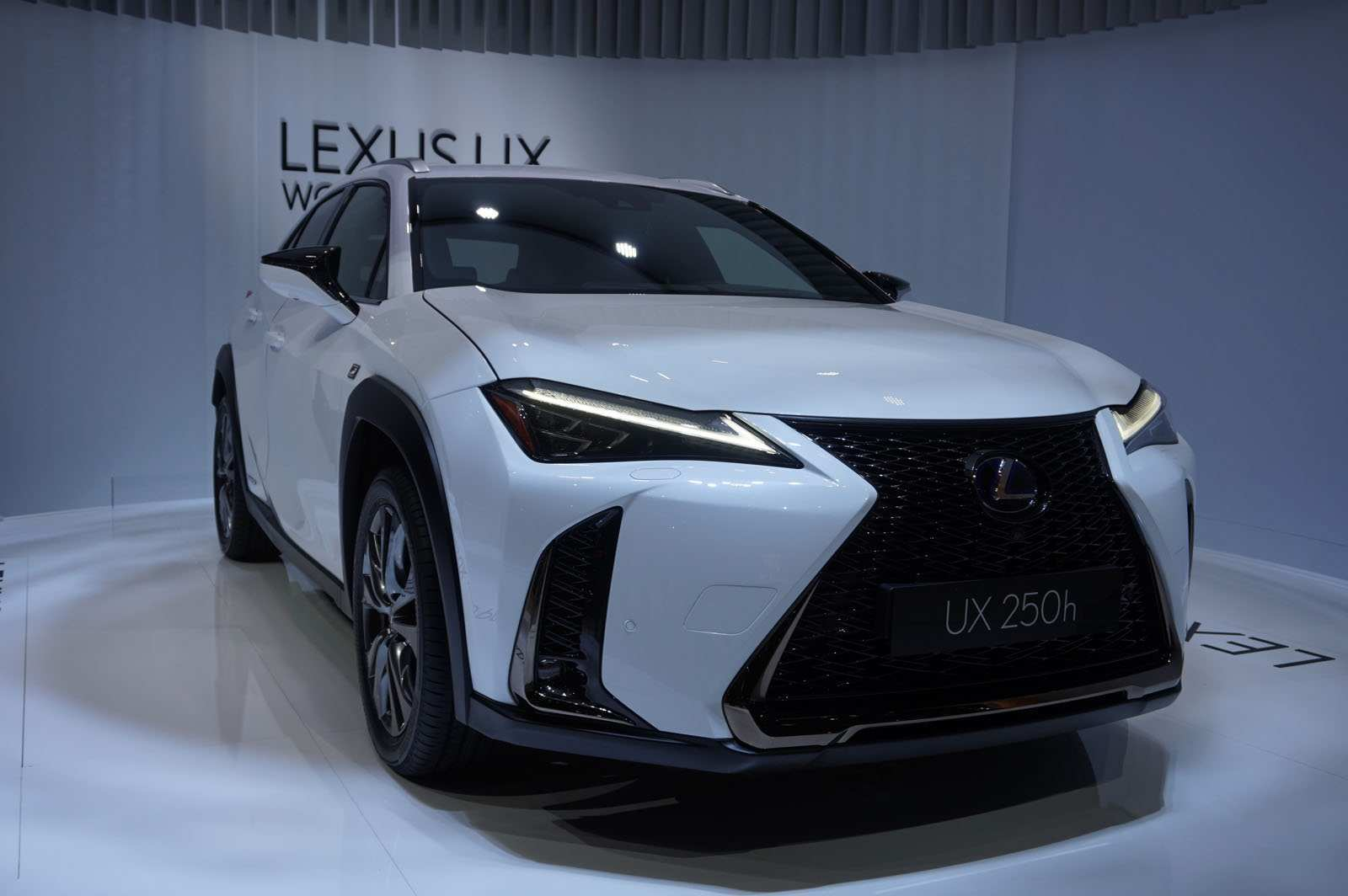 51 The 2019 Lexus Concept First Drive for 2019 Lexus Concept