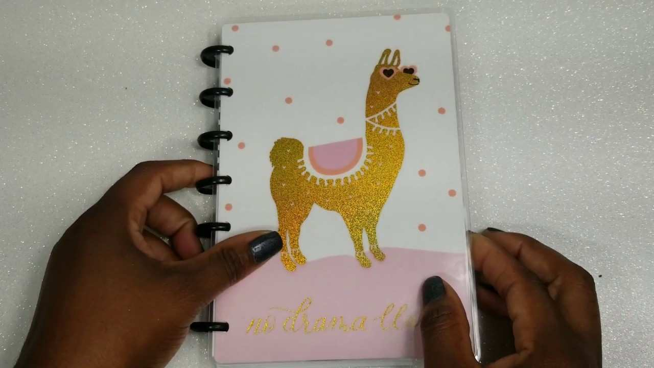 77 Great 2019 Mini Happy Planner Overview for 2019 Mini Happy Planner