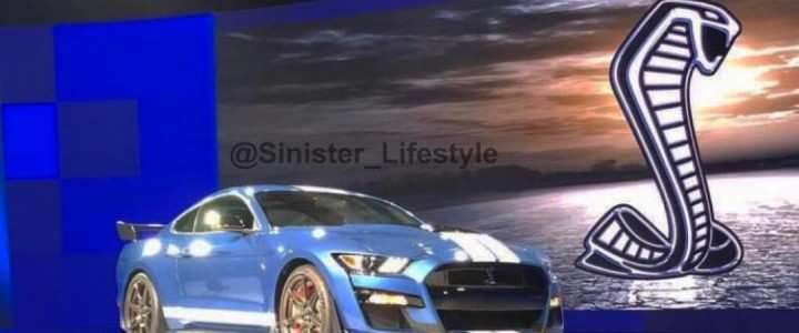 85 All New 2020 Ford Shelby Gt500 Price Price and Review by 2020 Ford Shelby Gt500 Price