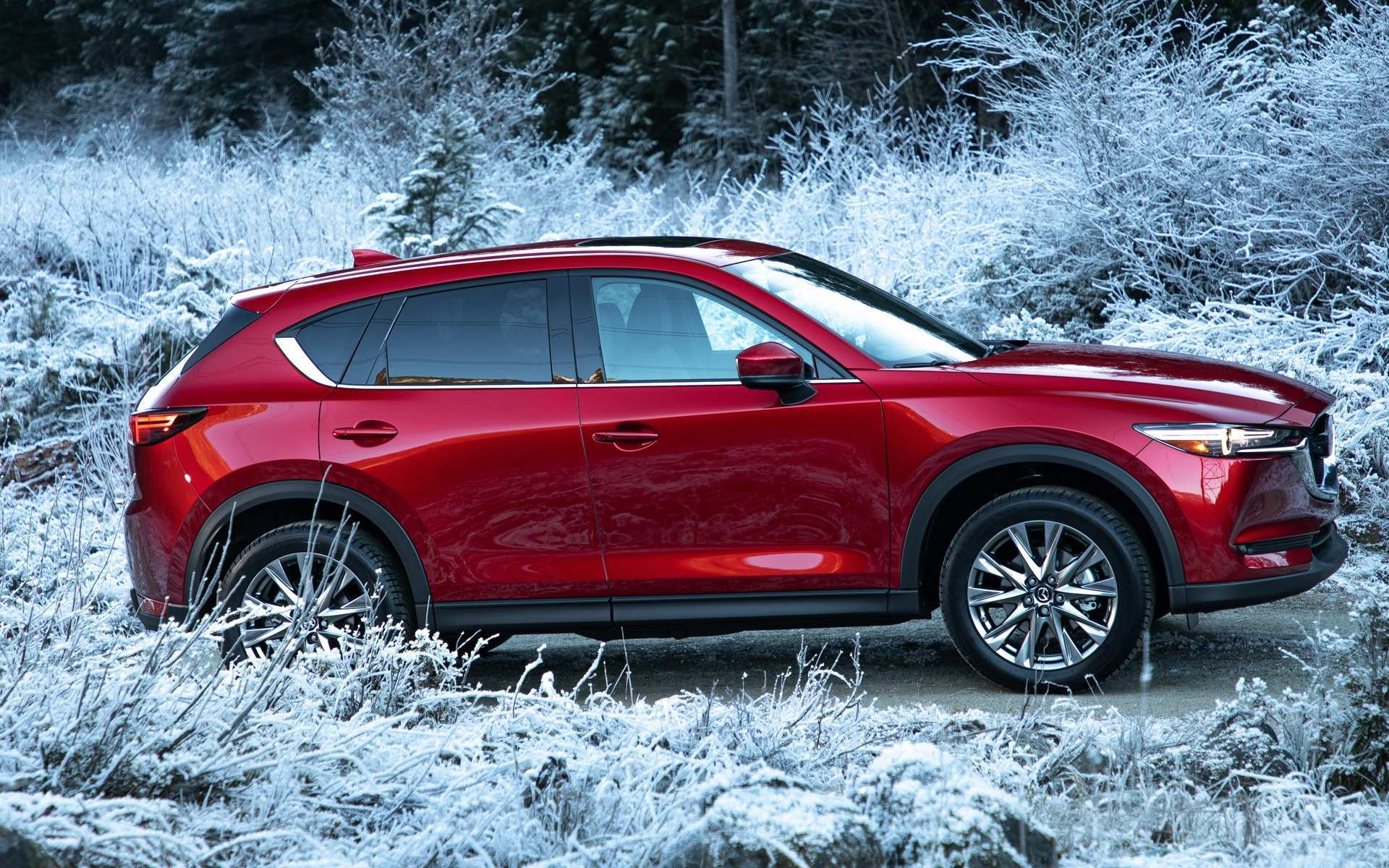 15 Concept of Best 2019 Mazda Truck Usa First Drive Exterior and Interior for Best 2019 Mazda Truck Usa First Drive
