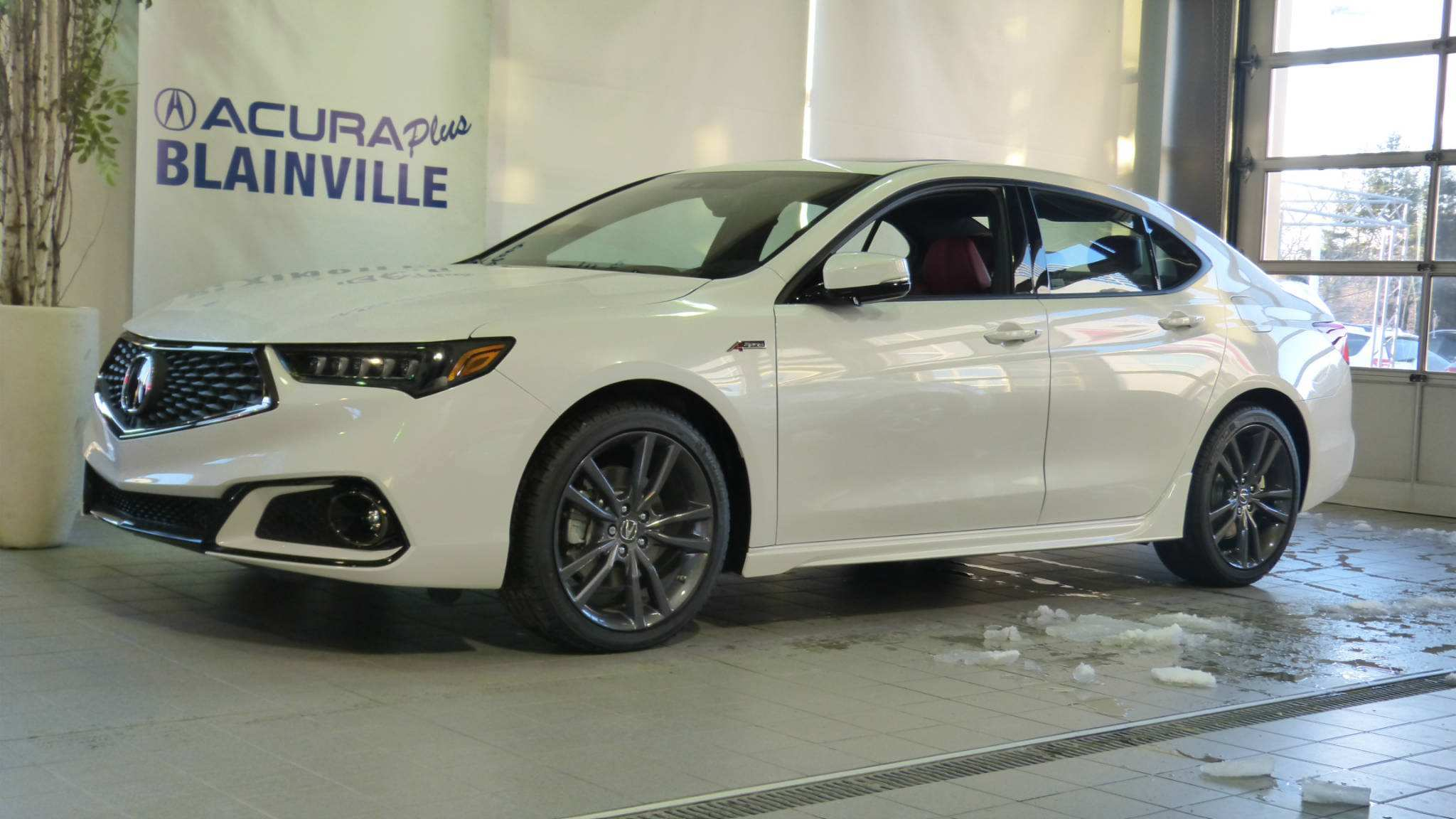 21 Best Review Best Acura 2019 Tlx Brochure Redesign History for Best Acura 2019 Tlx Brochure Redesign