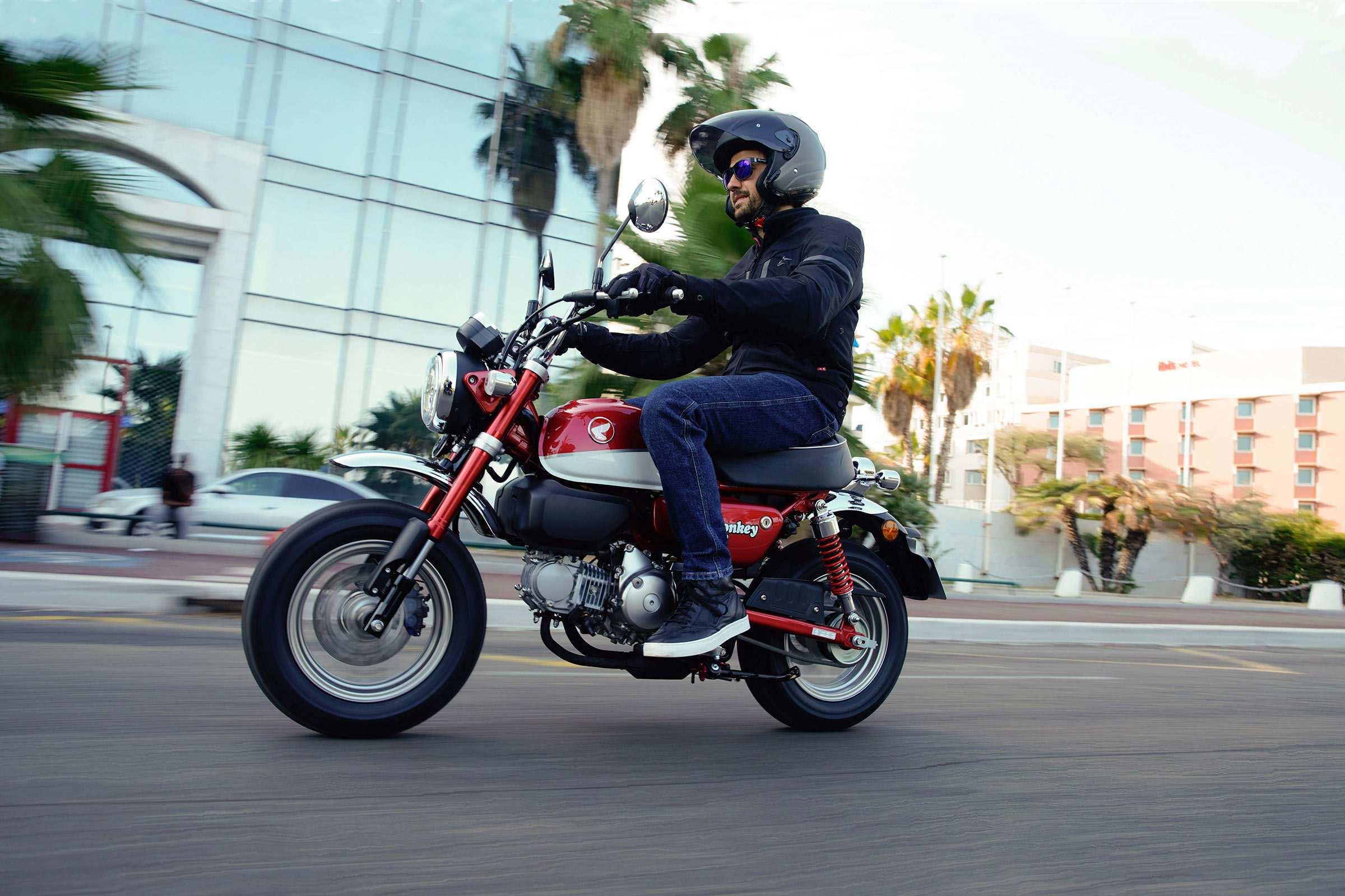81 New Monkey Honda 2019 Price Price with Monkey Honda 2019 Price
