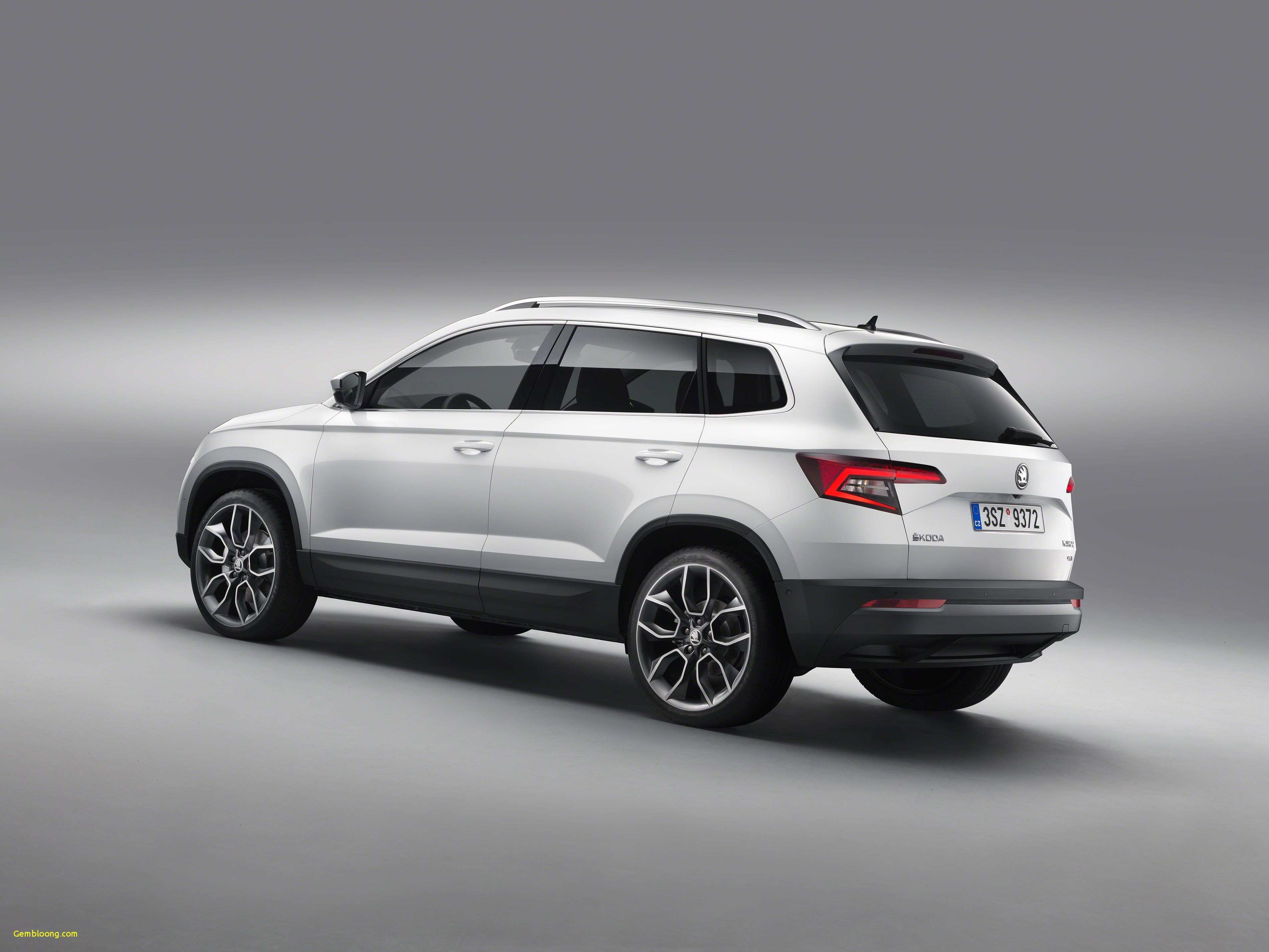 33 The 2019 Skoda Snowman Exterior and Interior by 2019 Skoda Snowman