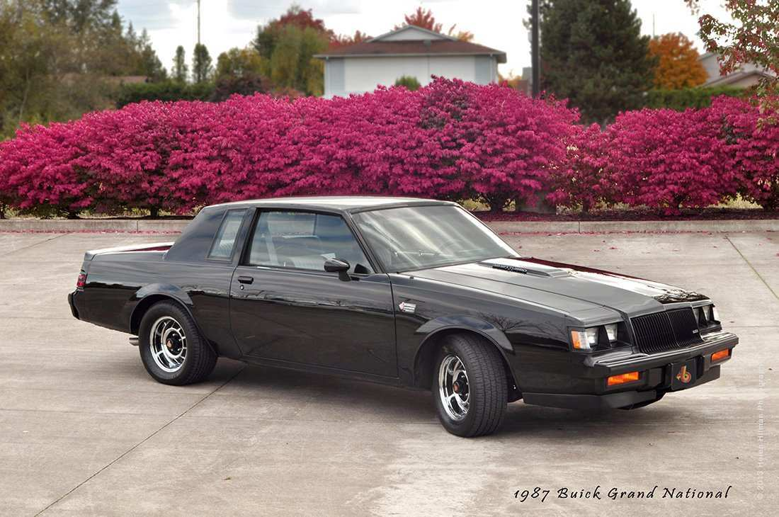 93 The Buick Grand National Pictures Reviews for Buick Grand National Pictures