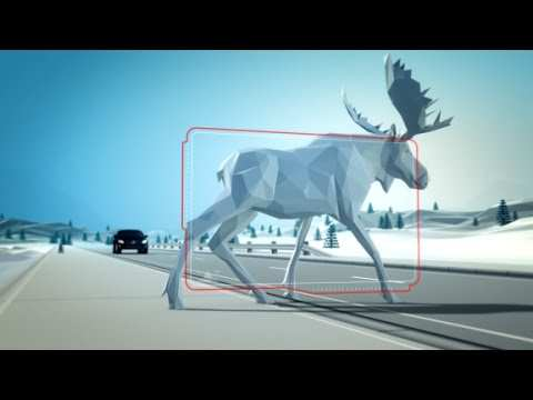22 The Volvo Goal 2020 Photos with Volvo Goal 2020